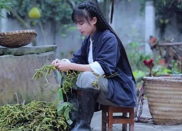 【双语学习】越南李子柒?只能被模仿无法被超越