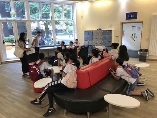 【双语学习】最新韩剧《便利店新星》收视一路飘红